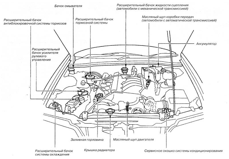 Инструкция По Эксплуатации Хонда Шатл