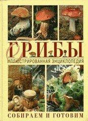 Иллюстрированная энциклопедия грибов. Собираем и готовим - подарочное издание