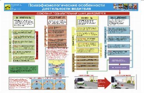 Учебный плакат Психофизиологические особенности деятельности водителя